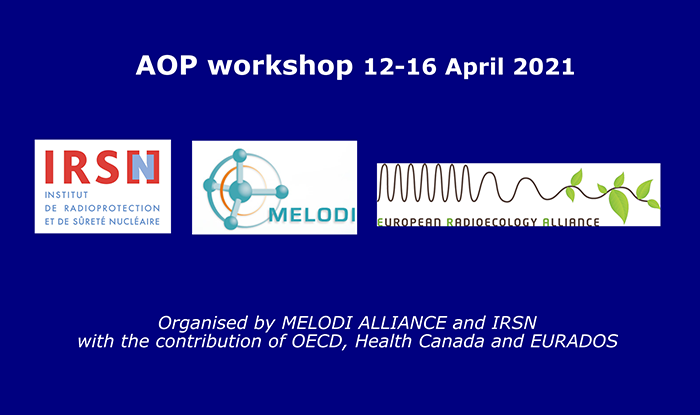 Vignette Melodi Alliance AOP workshop