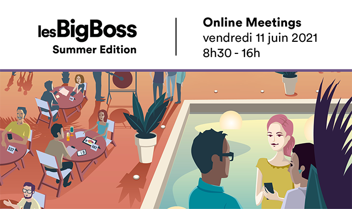 Vignette Summer Online Meetings